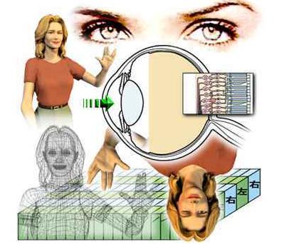 老年性白内障手术,大家如何选择人工晶体